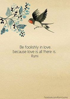 Be foolishly in love, because love is all there is.  Rumi