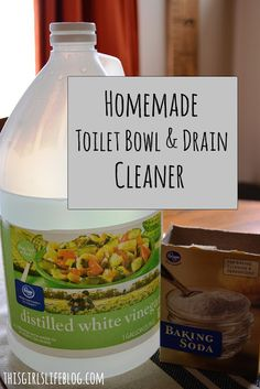 This Girl's Life - A Lifestyle Blog: Tip Tuesday: Homemade Toilet Bowl & Drain Cleaner