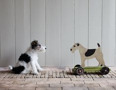 We love our dogs at The English Home, and we have watched the steady growth of Plum & Ashby's delightful range of