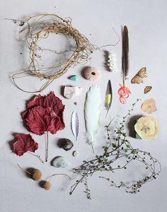 feathers, leaves, rocks