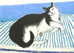 Original Prints for sale by Elizabeth Blackadder - Hayletts Art Gallery I Love Cats, Cool Cats, Cute Cat Illustration, Cat Illustrations, Blackadder, Cat Art, Painting & Drawing, Art Gallery, Drawings