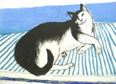 Toby by Dame Elizabeth Blackadder