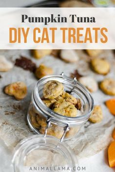 Treat your cat with delicious homemade DIY pumpkin tuna cat treats. My cats love these! Read the details about the calories, proteins, carbohydrates and fats this recipe contains. Give no more than 3-4 of these homemade cat treats to your cat in one day.