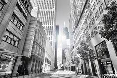 Best of Frankfurt Fotografie. Eine einmalige Photowall präsentiert die beliebtesten und außergewöhnlichsten Fotos von Frankfurt am Main.