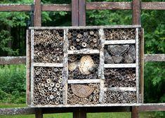 Bird Feeders, Home And Garden, Outdoor Decor, Home Decor, Decoration Home, Room Decor, Home Interior Design, Home Decoration, Teacup Bird Feeders