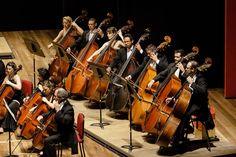 Naipe de Contrabaixos da Orquestra. Foto: Cicero Rodrigues.  OSB - Orquestra Sinfônica Brasileira