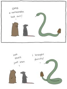 rattle-snake-and-donuts-funny