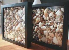 Ideas how to display your seashells in frames! Featured here: