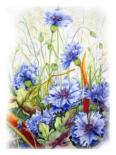 'Kornblumen 3' von Maria Inhoven bei artflakes.com als Poster oder Kunstdruck