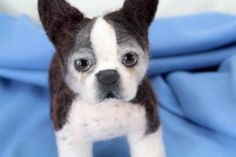 Stuffed Boston Terrier in a cage