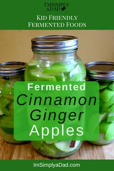 3 Easy Recipes for Kid Friendly Fermented Foods Fermented foods are one of the best things you can do for your gut health. Try these 3 recipes for kid friendly fermented foods. You'll be on your way to better health and have a tasty low sugar snack! Fermentation Recipes, Canning Recipes, Easy Meals For Kids, Kids Meals, Kefir, How To Make Fermented Foods, Fermented Fruit Recipe, Fermented Cabbage, Healthy Snacks