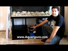 How to Set Up a Low Cost and Easy to Maintain Saltwater Reef Aquarium Saltwater Aquarium Beginner, Saltwater Aquarium Fish, Saltwater Tank, Freshwater Aquarium, Home Aquarium, Reef Aquarium, Aquarium Ideas, Cool Fish Tanks, Aquarium Accessories