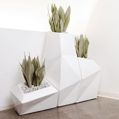 Discover the Faz Planter: an elegant, faceted modern planter that brings contrast and texture to any space!