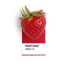 Inka Mathew matches found objects with their exact Pantone color chip for her Tiny PMS Match Project.