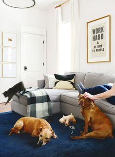 10 Pack Plywood Wooden Dog Shape Craft Blank Corgi Dog