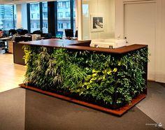 дизайн стола, стойка ресепшн в стиле эко с живыми растениями Вот это да! Идеи для экологичного дизайна от… самой природы Жизнь в городской среде имеет массу преимуществ, но многие горожане остро чувству...