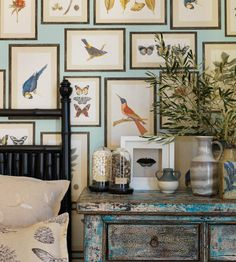 Picture Gallery Wallpaper by Sanderson   Jane Clayton
