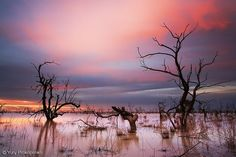Sunset at Menindee Lakes,Central Darling, New South Wales, Australia