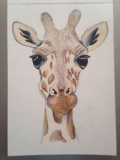 Simple girafe easy giraffe drawing, how to draw giraffe, giraffe painting, Amazing Drawings, Easy Drawings, Interesting Drawings, Crayon Drawings, Drawing Skills, Drawing Sketches, Sketching, Giraffe Art, Giraffe Painting