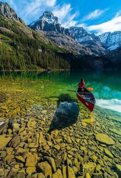 Crystal clear water of Lake O'Hara, Yoho National Park, BC, Canada Photography by ©️️ Jonathan Zhang earthofficial is part of Beautiful places - Yoho National Park, Parc National, Places To Travel, Places To See, Camping Places, Camping Gear, Travel Destinations, Parcs, Canada Travel