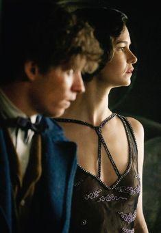 Newt Scamander and Tina Goldstein Fantastic Beasts Movie, Fantastic Beasts And Where, Lorde, Narnia, Newt Scamander Aesthetic, Hogwarts, Gellert Grindelwald, Eddie Redmayne, Weird Creatures