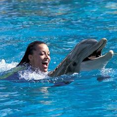 Swim with the Dolphins and Snorkel the Grand Reef Adventure with a 3 Night Hotel Stay and Airfare for (2)