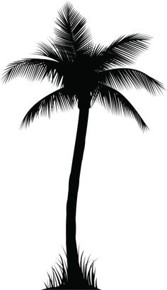 Illustration of a palm tree. Professional clip art for your print. Beachy Tattoos, Mermaid Song, Tree Tat, Palm Tree Vector, Palm Tree Silhouette, Forest Tattoos, Clay Stamps, Indian Art Paintings, Line Work Tattoo