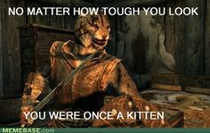 Skyrim - Khajiit, although I'm a stealth, thieving archer.