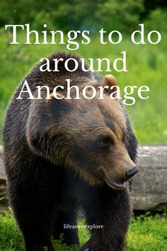 Top and highly recommended things to do around Anchorage area in Alaska