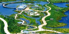 Hong Kong Wetland Park, Wetland Park Road, Tin Shui Wai, New Territories Source: http://www.discoverhongkong.com/de/see-do/great-outdoors/nature-parks/hong-kong-wetland-park.jsp#ixzz2qh5YwDH4
