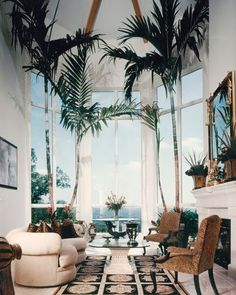 Find exotic rare tropical and zone specific palm trees for the interior and exterior of your home by visiting our website at realpalmtrees.com or click directly on the following link to view or purchase the tree you see in this picture: http://realpalmtrees.com/palm-tree-store/large-palm-trees/large-carpentaria-palm-tree.html Combine classic style with nature in home #Palmtrees #Interior #Design source: thegiftsoflife.tumblr.com