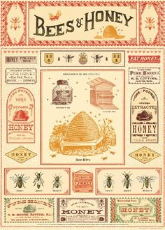 Cavallini-amp-Co-Bees-And-Honey-Decorative-Decoupage-Poster-Wrapping-Paper-Sheet