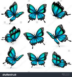 Find Set Beautiful Blue Butterflies Vector stock images in HD and millions of other royalty-free stock photos, illustrations and vectors in the Shutterstock collection. Thousands of new, high-quality pictures added every day. Blue Butterfly Tattoo, Blue Butterfly Wallpaper, Butterfly Drawing, Butterfly Crafts, Love Wallpaper, Haut Tattoo, Tattoo Lettering Design, White Stock Image, Beautiful Butterflies