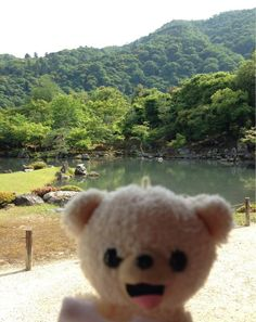 ニコニコ☆ https://twitter.com/fafa_bear/status/349769655616937984