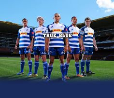 The DHL Stormers Rugby Pictures, Super Rugby, My Childhood Memories, Sports, Life, Hs Sports, Sport
