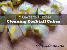garbage disposal cocktail cubes cover