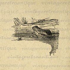 Frog Graphic Image Digital Illustration by VintageRetroAntique