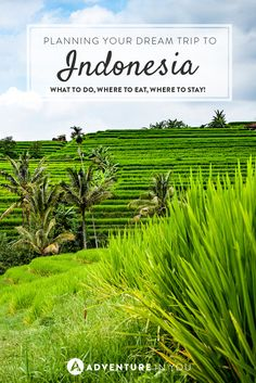 Planning a trip to Indonesia? Here's where to start!