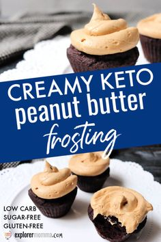 Creamy keto peanut butter frosting is rich and creamy yet quick and easy to make. Whip it together for a low carb icing on a gluten-free cake or cupcakes. Chocolate peanut butter is always a good choice! Keto Friendly Desserts, Low Carb Desserts, Healthy Dessert Recipes, Low Carb Recipes, Healthy Food, Low Carb Cupcakes, Gourmet Desserts, Plated Desserts, Recipes Dinner