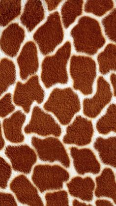 Customize your iPhone 5 with this high definition Giraffe Pattern wallpaper from HD Phone Wallpapers! Animal Print Background, Animal Print Wallpaper, Textured Background, Animal Print Rug, Giraffe Pattern, Giraffe Print, Cheetah Print, Iphone 5 Wallpaper, Colorful Wallpaper