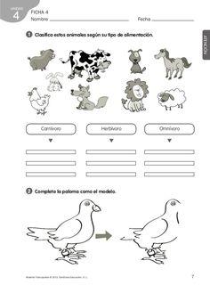 ficha animales herbívoros carnívoros y omnívoros para colorear - Buscar con Google