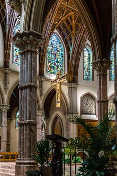 Home of one of the most famous Catholic Cathedrals in the US, the Holy Name Cathedral in Chicago, welcome you with open arms, to come celebrate God with us.