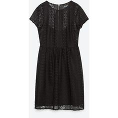 Zara Guipure Lace Dress With Flounce Skirt ($49) ❤ liked on Polyvore featuring dresses, black, frilly dress, frill dress, black ruffle dress, lace ruffle dress and black lace dress
