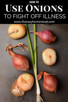How to Use Onions to Fight Off Illness- Simple & Easy Method for Your Home | The Easy Homestead (.com)