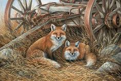 Rustic Retreat-Red Foxes Art Print by Rosemary Millette : Wild Wings