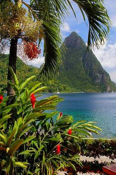 Saint Lucia - a small island nation in the Caribbean Sea, North of St. Vincent and the Grenadines and South of Martinique.