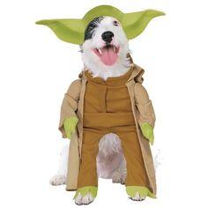 Dog Costumes!!!