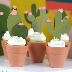 cactus cupcakes in terra cotta pot
