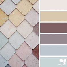 today's inspiration image for { wall color } is by @wanderforawhile ... thank you, Kathryn, for another incredible #SeedsColor image share!