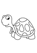 Coloriage la tortue